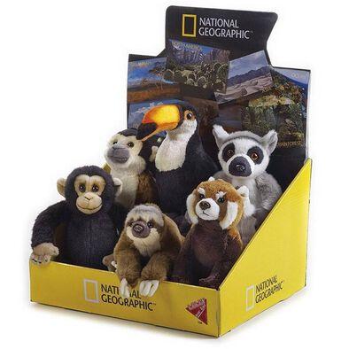National Geographic國家地理頻道- 熱帶雨林小動物 - 隨機發貨